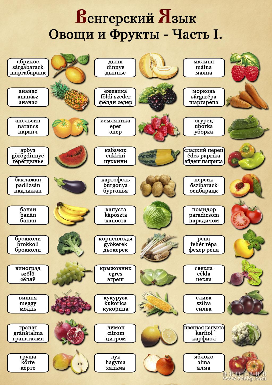 прибыли список всех овощей с фото одинаково хорошо